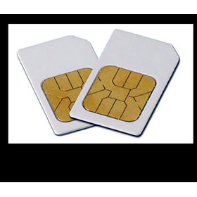 Diamond Shield ChipCard Bio 21 (Knochen) nach HP Riemann